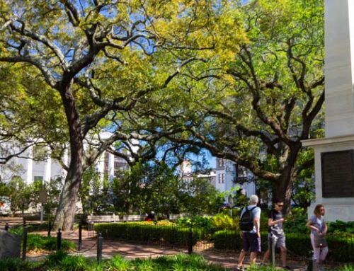 Savannah's Historical Squares: Johnson Square