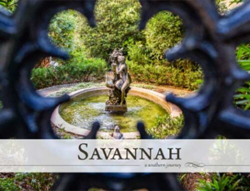 Savannah: A Southern Journey Photo Contest 2020