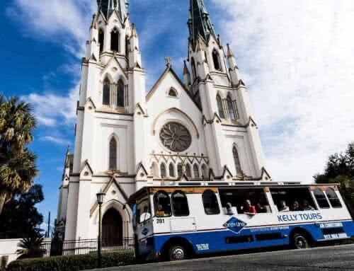 5 (Guided) Ways to Explore Savannah
